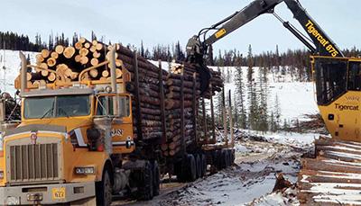 Logging & Sawmilling Journal March/April 2014 - San Jose ...