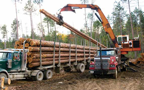 Logging Sawmilling Journal March April 2015 Careful