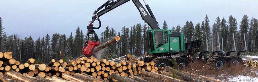 Logging Amp Sawmilling Journal June July 2017 Moore S