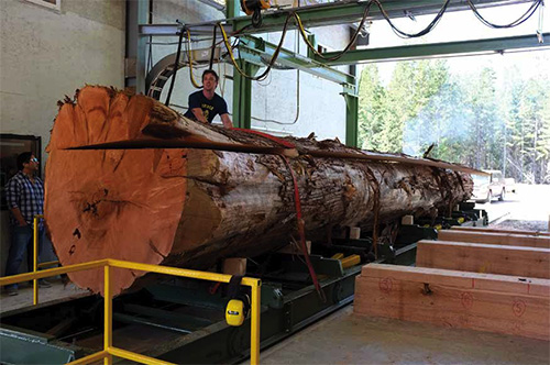Logging Amp Sawmilling Journal May 2017 Jci Touchwood