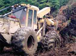 April 2006 - Logging and Sawmilling Journal - Spot Light
