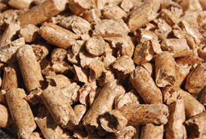 August september 2010 weathering the downturn with wood pellets - How to make wood pellets wise investment ...