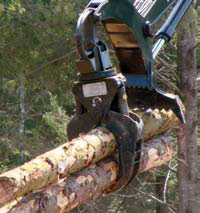 Logging and Sawmilling Journal December/January 2011_TECH