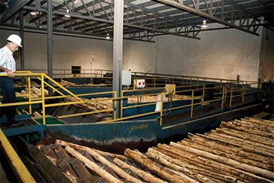 Forex lumber