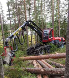 main superior about forest jobs