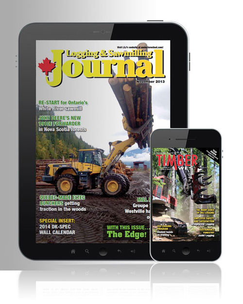Subscribe to our Digital Editions